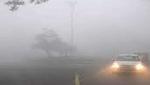 मध्यप्रदेश में ठंड जारी, दो दिन बाद बारिश के आसार