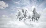 घोड़े से भी तेज दौड़ेगी इन 3 राशियों की किस्मत, होगा अब...