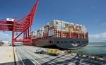 नवंबर महिनें में अंतर्राष्ट्रीय बाजार में भारत का निर्यात गिरा