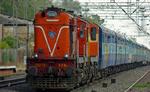 ट्रेन चालक की सतर्कता से बची हाथी की जान