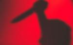 तंत्रमंत्र के चक्कर में 4 लोगों की निर्मम हत्या, आरोपी गिरफ्तार