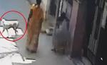 महिला ने कुत्ते से छीनी रोटी, 3 दिन तक बच्चियां रहीं भूखी