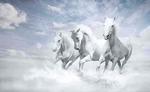 अब घोड़े से भी तेज दौड़ेगी इन 4 राशि वालों की किस्मत, क्योंकि...
