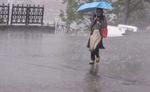 निसर्ग के प्रभाव में समूचे मध्यप्रदेश में बारिश, 27 जिलों में अलर्ट