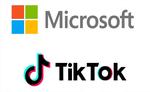 माइक्रोसॉफ्ट ने टिकटॉक की खरीद के सौदे पर लगाया विराम