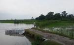 यूपी : गंडक नदी ने 400 एकड़ खेती योग्य भूमि नदी में विलीन