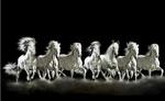 घर या ऑफिस में क्यो लगाई जाती है सफेद घोड़ों की तस्वीर, जानिए सात घोड़ो का राज