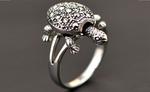 इन चार राशियों वालों को गलती से भी नहीं पहननी चाहिए कछुवे की अंगूठी
