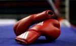 पांच भारतीय मुक्केबाज क्वार्टरफाइनल में