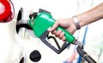 पेट्रोल-डीजल के दाम लगातार सातवें दिन स्थिर