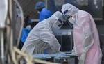विश्व में कोरोना से 17.55 करोड़ से अधिक लोग संक्रमित